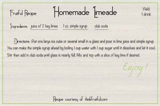 homemade-limeade